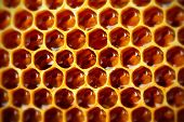 stock photo of honeycomb  - Honeycomb background - JPG