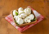 foto of mushroom  - white champignon mushrooms - JPG