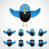 picture of tuxedo  - Blue cartoon business bird in tuxedo collection - JPG
