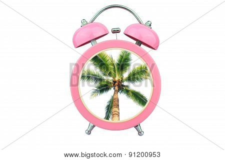 Conceptual Art : Time To Relax :coconut Tree Within Pink Alarm Clock Isolated On White Background