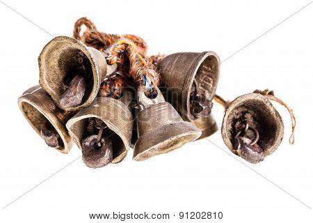 Indian Bells Bundle