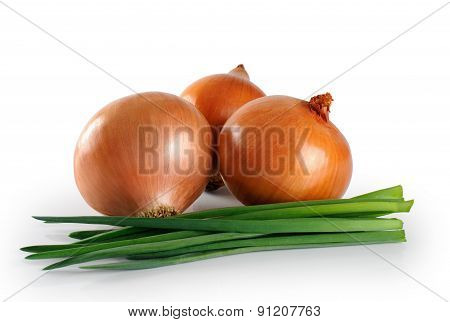 Onions on white background. Green.