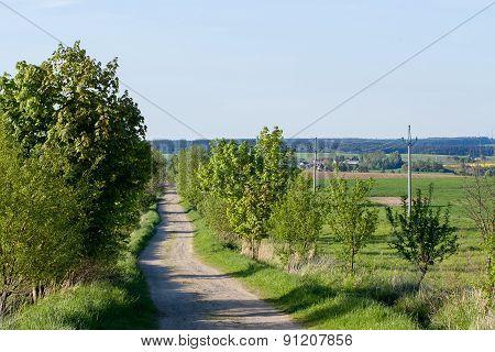 Rural Road On Beautiful Spring Rural Landscape