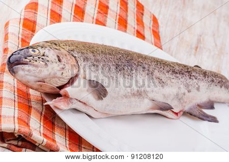 Raw Trout On A Plate