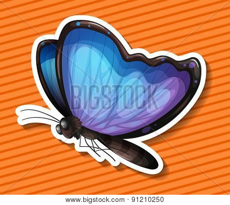 Close up blue butterfly flying alone