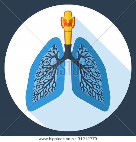 Flat design icon of human lungs. Vector illustration.