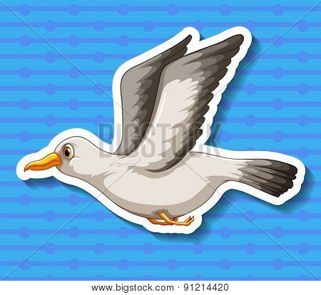 Single seagull flying alone with blue background