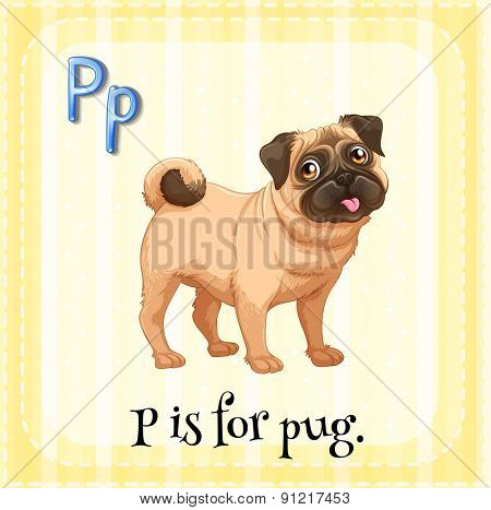 Flashcard alphabet P is for pug