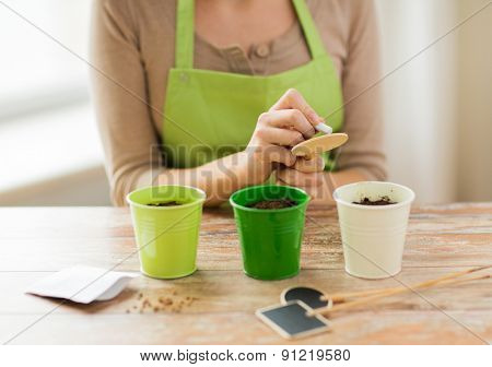 people, gardening, seeding and profession concept - close up of woman writing name on garden sign over pots with soil and seeds