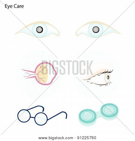 Eye Care With Glasses And Contact Lenses