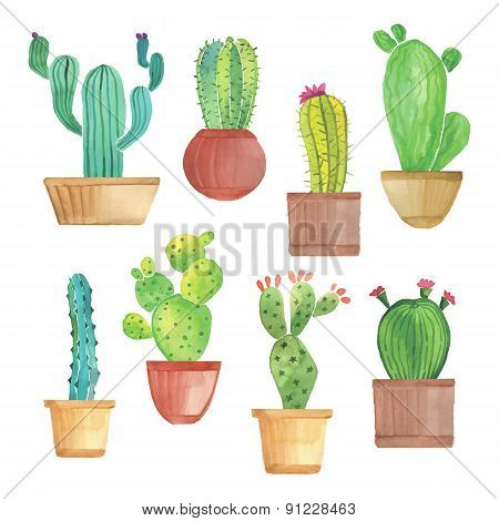 Watercolor cactus set