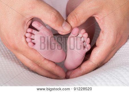 Newborn Baby Feet On Male Hands, Shape Like A Lovely Heart