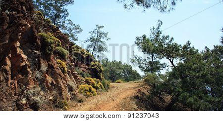 Road To Sazak Bay. Pine-trees And Rocks - Vintage Effect.