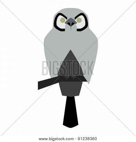 vector illustration of owl
