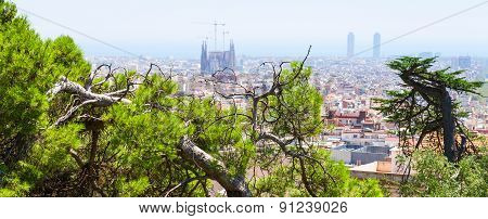Green Trees And Cityscape Of Barcelona