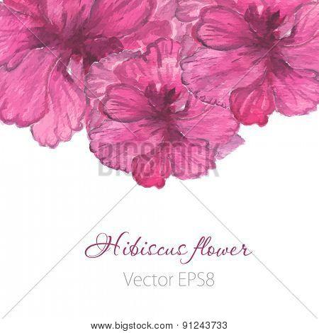 Watercolor painted  vector  hibiscus. Tropical Flower. Violet vector flower