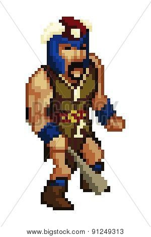 Pixel Style Game Character