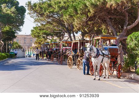 Row of horse with carriages in Mdina old capital of Malta. Attraction for tourists.