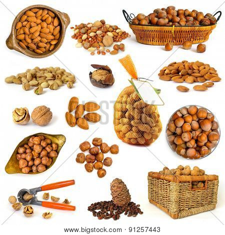 different nuts isolated on white background