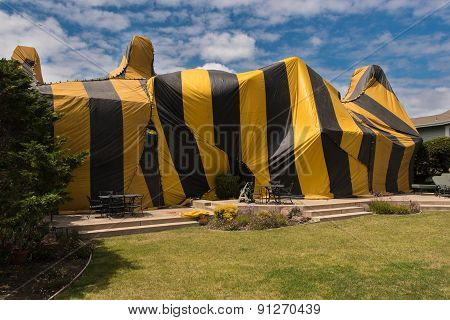 House Is Covered By Tent For Fumigation