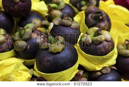 Exotic Fruit Purple Mangosteen