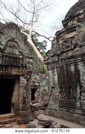 Preah Khan Temple in Angkor, Siem Reap, Cambodia