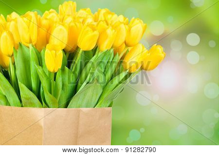 Tulips on green background