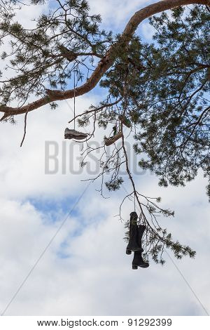 strange tradition to throw  shoes on trees