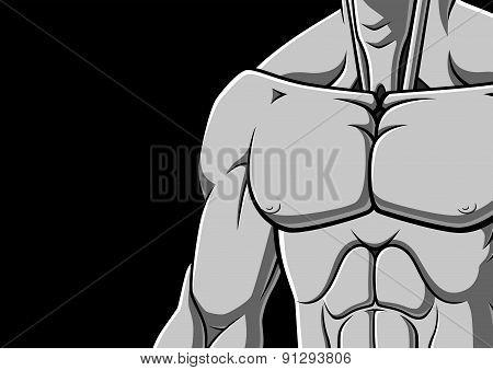 Muscular chest
