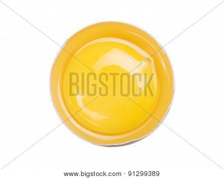 Yolk Egg
