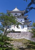 picture of ninja  - The original Ninja castle of Iga Ueno also known as  - JPG