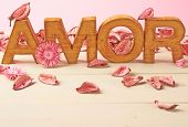 image of amor  - Word Amor meaning Love in multiple languages as a composition of wooden block letters covered with the dried flower potpourri leaves against the pink background - JPG