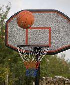 Ball Has Fallen Into Basket poster
