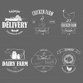 picture of human egg  - Farm Fresh Products Badge Set Vector Illustration - JPG