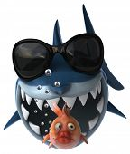foto of foodchain  - Fun shark - JPG