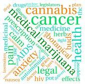 picture of medical marijuana  - Medical marijuana word cloud on a white background - JPG