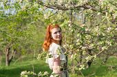foto of orchard  - lovely red - JPG