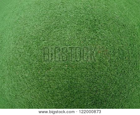 Grass texture fish eye lens pattern close up