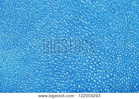 Genuine leather background - blue painted texture of natural stingray skin