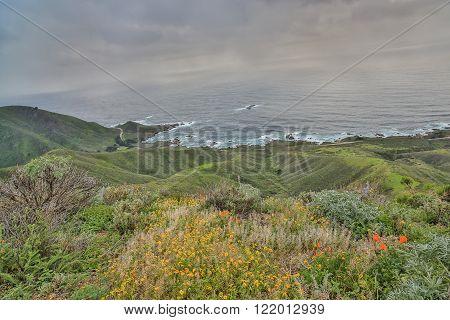 Garrapata State Park, Carmel Valley, Central California.