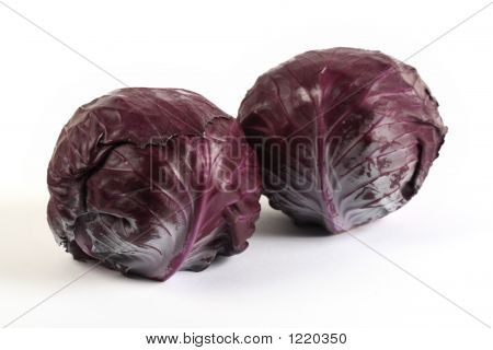 Red Baby Cabbages