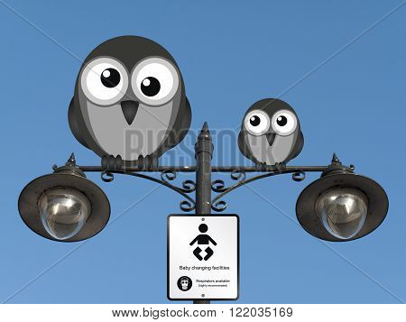 Comical baby changing facilities sign with birds perched on a lamppost against a clear blue sky