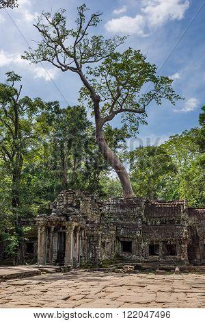 Ta Phrom Main Entrance