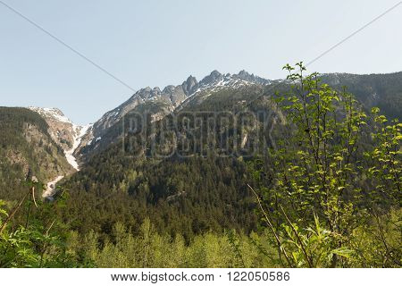 View of Southcentral Alaska's Mountains and Forests ** Note: Soft Focus at 100%, best at smaller sizes