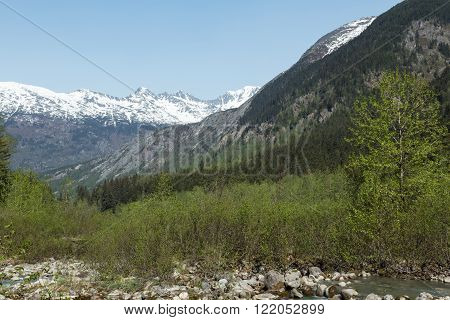Landscape view of Alaska's mountains, forests, and rivers