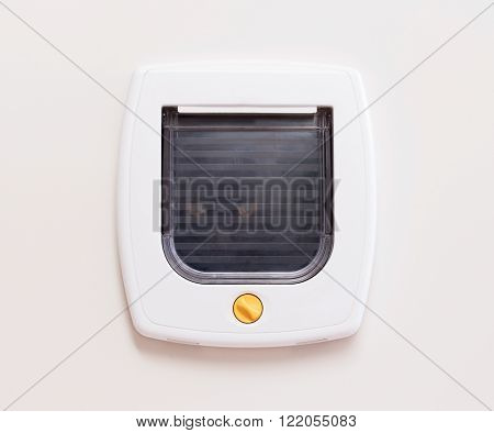 Inside view of a regular white cat flap, cat comming through