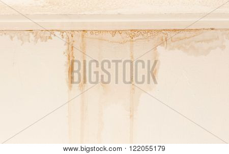 Water damaged ceiling and wall white becomming brown