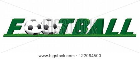 logo inscription football team play with the ball and the grass lawn