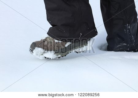 Woman is  hiking in fresh snow. Vorarlberg. Austria