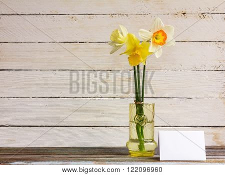 Three spring flower yellow and white daffodils with Golden wedding rings in glass vase with greeting blank card on a white wooden background. The Provence style rustic. With space for text